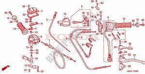 2001 Trx 350 Engine Diagram : switch cable for honda fourtrax rancher 350 4x4 electric ~ A.2002-acura-tl-radio.info Haus und Dekorationen