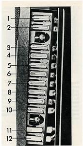 Volvo 164  1973  - Fuse Box Diagram