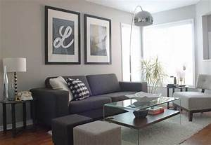 Living room color schemes grey couch ideas with glass for Gray colors for living rooms