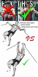 Tuturial Chest Workout