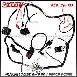 Full Wiring Harness Loom Solenoid Coil Regulator Cdi 200cc