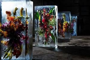 bouquets de fleurs exotiques dans des blocs de glace par With affiche chambre bébé avec composition fleurs exotiques