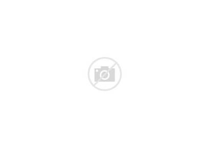 Sandra Url