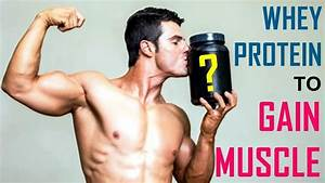 Best Whey Protein To Build Muscle Fast
