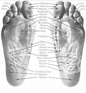 Where To Put Essential Oils On Feet Diagram