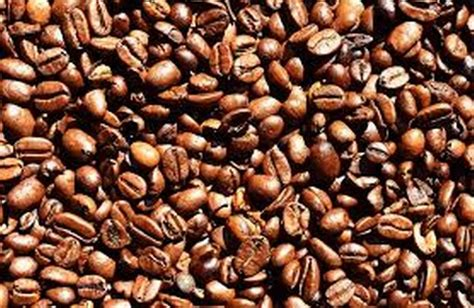 Coffee during pregnancy tea during pregnancy. Drinking decaf coffee during pregnancy could harm your ...