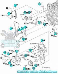 2014 Nissan Juke Timing Chain Parts Diagram  Mr16ddt Engine
