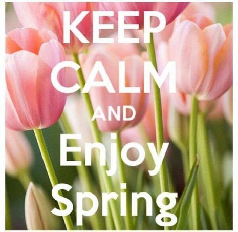 Flores e Imágenes con frases de feliz día de la primavera