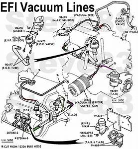Ford 5 4 L Engine Diagram