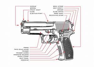 Pin On Firearm Education 101