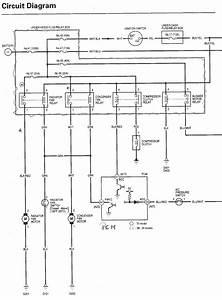 2006 Honda Civic Radio Wiring Diagram