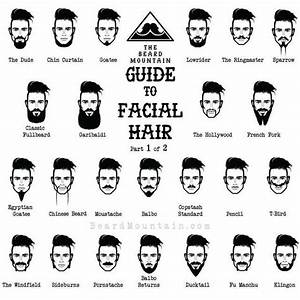 The Full Guide To Facial Hair Awesomeness