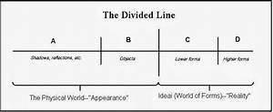 Kenodoxia  Divided Lines