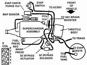Wiring Diagram Database  2003 Ford Windstar Vacuum Hose