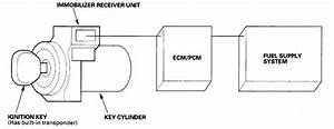 Disable Trunk Light I Have A 2002 Honda Accord Coupe Se I Got The Key From