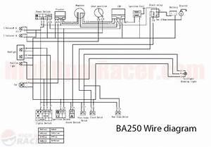 Wiring Diagram For Baja 150cc Atvs