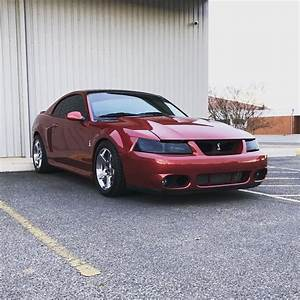 New Edge Mustang Gt For Sale | Convertible Cars