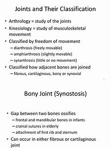 Human Joints