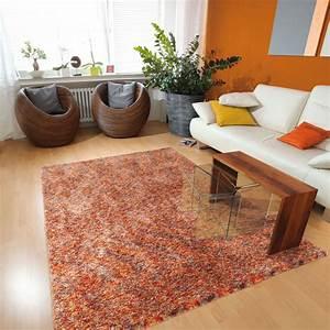 Acheter tapis salon idees de decoration interieure for Acheter tapis salon
