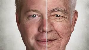 Diagram Of Aging