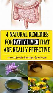 Liver Is One Of The Most Important Organs Inside Our Body Because Of The Various Functions That