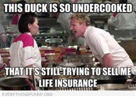 Allianz offers term insurance and fixed index universal life insurance. Funny Life Insurance Jokes | Kappit