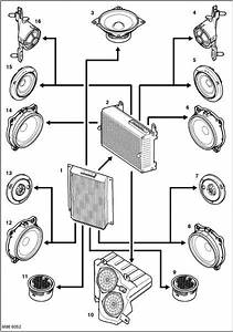 Bmw Logic 7 Amp Wiring Diagram