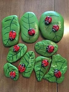 Ladybug, Rocks, On, Leaf, Rocks