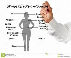 Stress Effects On Body Stock Photo  Image Of Lecturer