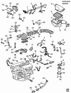 Cadillac Allante Canister  Fuel Tank Evaporator  Purge