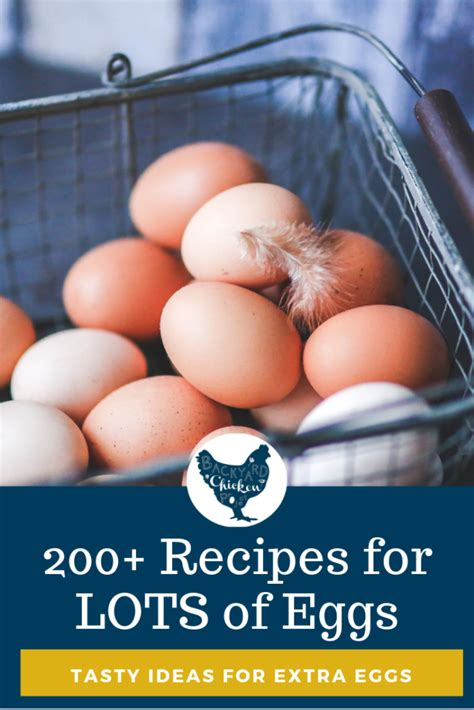 Make dinner tonight, get skills for a lifetime. 200+ Recipes that Use a LOT of Eggs in 2020 | Recipes ...