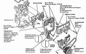 20 Luxury 1994 Acura Integra Wiring Diagram