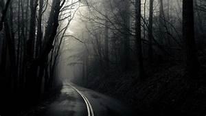 Dark, Woods, Wallpaper