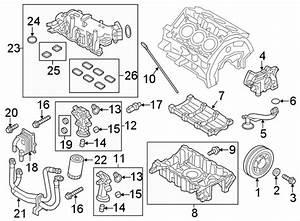 Ford Explorer Gasket  Intake  Manifold
