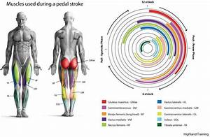 Cycling Sports Injuries  Feel A Better Burn In The Saddle