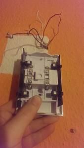 Klingel Anschließen 2 Kabel : klingel wie anschlie en es kommen 6 kabel aus der wand elektronik ~ A.2002-acura-tl-radio.info Haus und Dekorationen