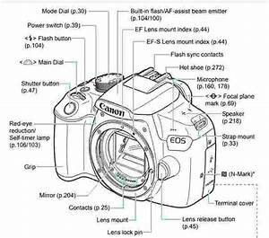 Canon Dslr Manuals
