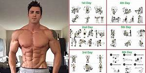 Total Body Workout Routine And How To Set Up Your Workout For Optimal Results