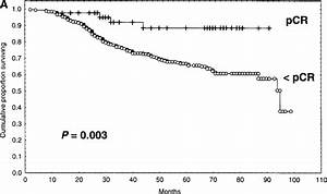 Relationship Of Pathologic Primary Breast Tumor And