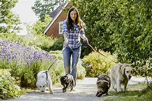 Pet sitting guide for Be a dog sitter