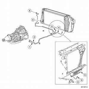 Ford Expedition Transmission Diagram