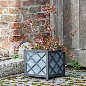 Buy, Norfolk, Cube, Planter, Delivery, By, Waitrose, Garden