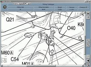 Fiat Doblo  U0026 Fiat Doblo Cargo Service Manuals  Repair