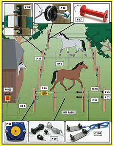 Horse Electric Fencing Equestrian