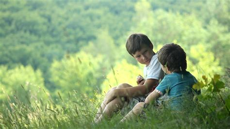 boys  forest   doodool videohive