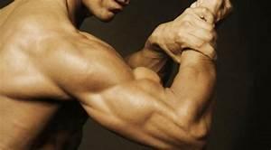 Dedicated Training  Triceps  U0026 Biceps Workout