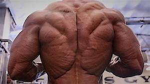 CLASSIC PHYSIQUE PERFECTION - SYMMETRY - SHREDDED ...