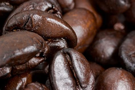 20 coffee seeds tree bush coffea perennial garden home organic fresh plants. Coffee Chocolate Mousse Body Butter   Garden of Essences