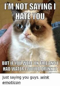 I'M NOT SAYING I HATE YOU BUT IF YOU WERE ON FIRE AND I ...