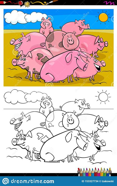 Put your knowledge to the test. Pigs Farm Animal Characters Group Color Book Stock Vector ...